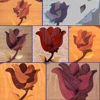 Collage of the RoseBud Revisions